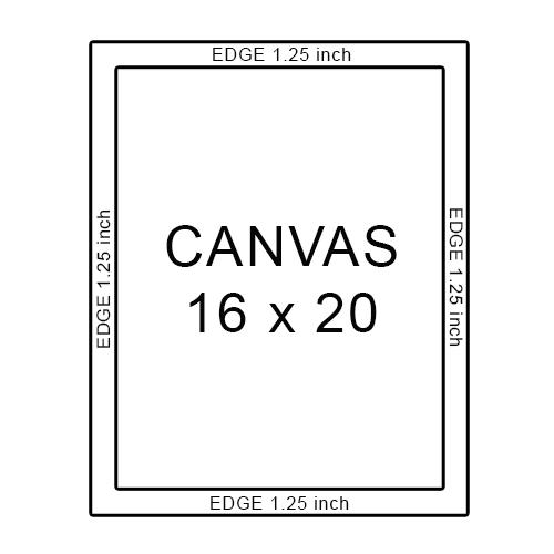 canvas 16 x 20